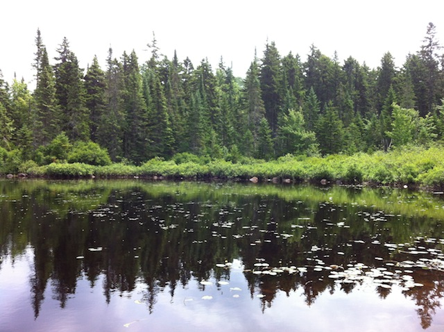 parc-national-mauricie