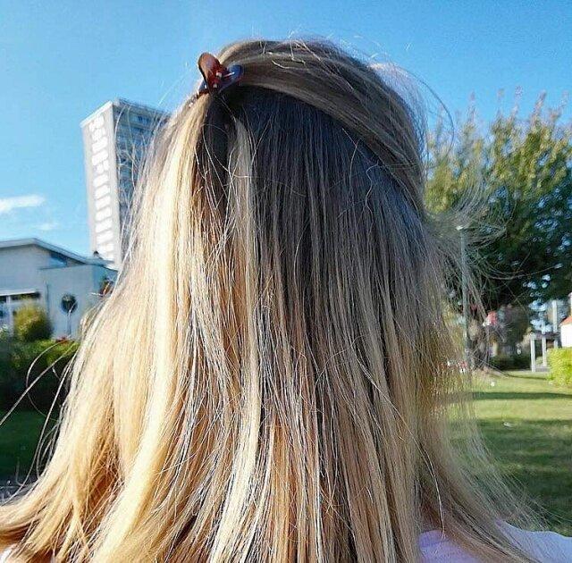 Eclaircir Vos Cheveux Naturellement Le Rhapontic Et Autres